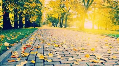Xúc cảm mùa thu - Thuận Anh