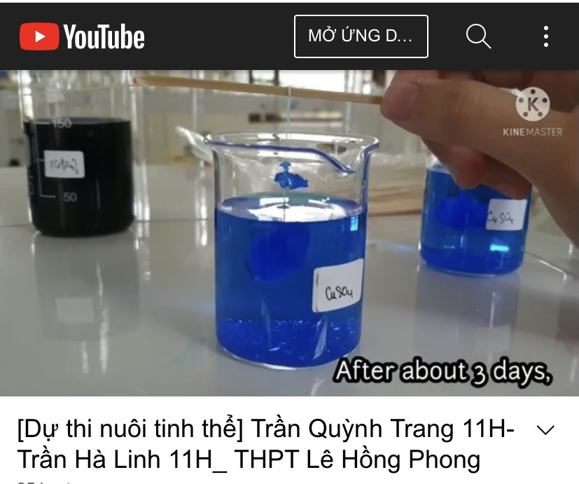 Học sinh trường THPT Chuyên Lê Hồng Phong đoạt giải cuộc thi Nuôi tinh thể - Ươm mầm khoa học Việt Nam năm học 2020 - 2021
